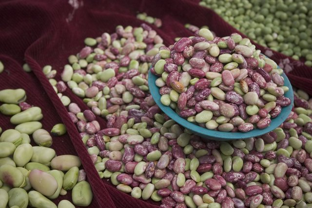 Legumes are rich in lecithin.