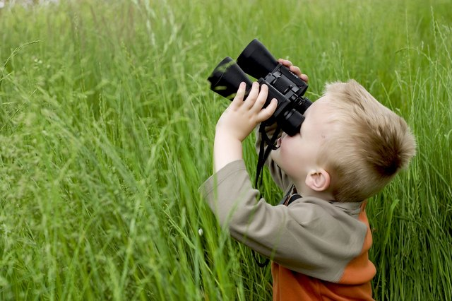 A searching game involves asking toddlers to look for particular objects.