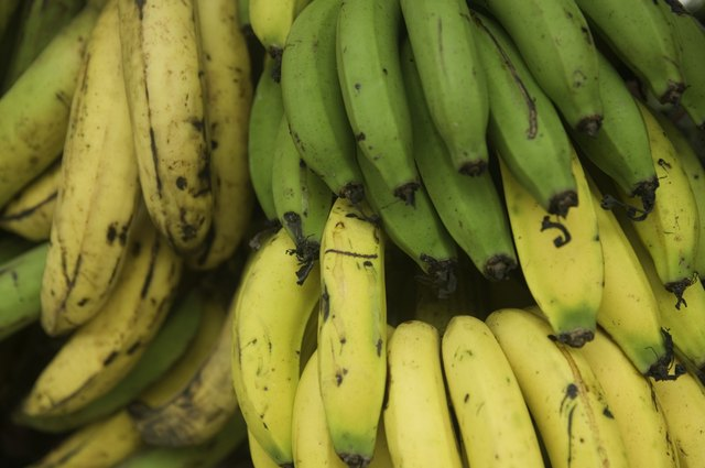 Bananas for sale at a market.