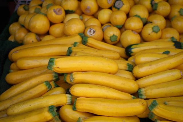 Vitamins in Yellow Squash