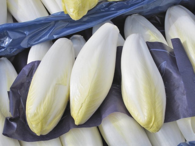 dieters can enjoy 1 cup of endive