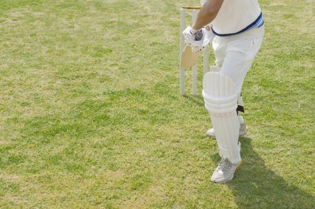 Warning Signs of Cracking in a Cricket Bat