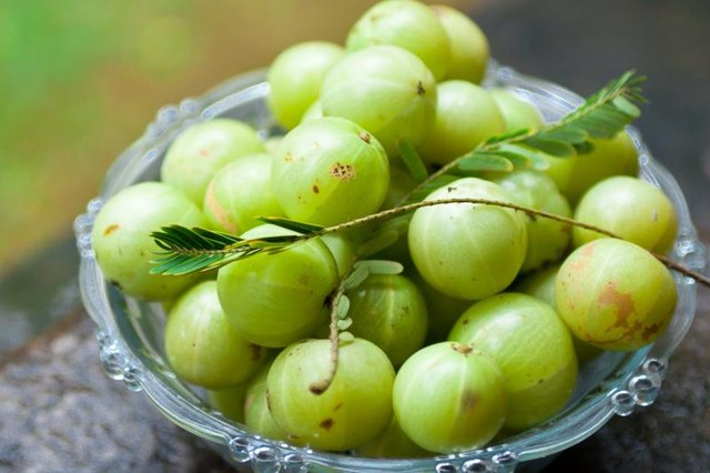 What Are the Benefits of Amla Fruit?