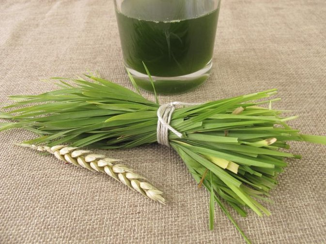 Wheatgrass Juice & Cancer