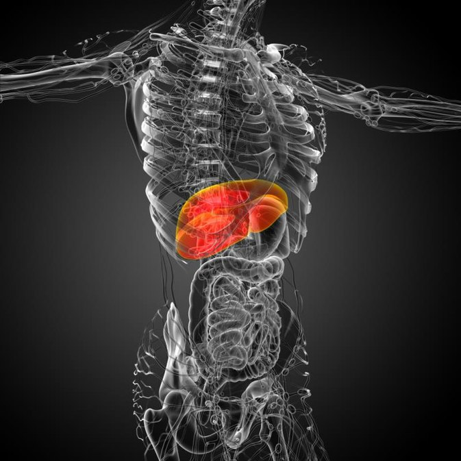 Do Vitamins Cause Liver Enzymes to Be Elevated?
