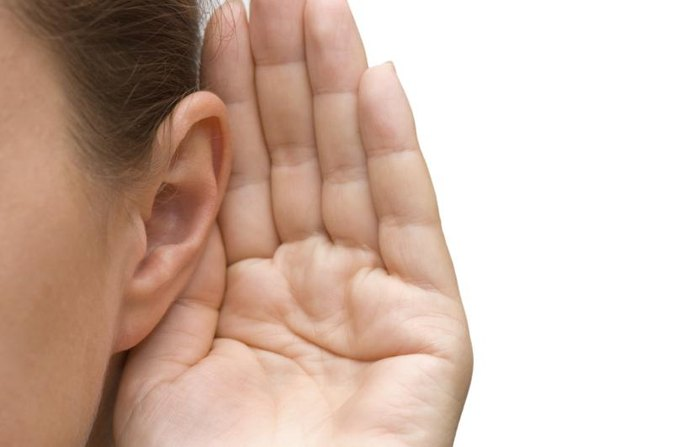 What Are the Functions of the Muscles That Move the Ears?