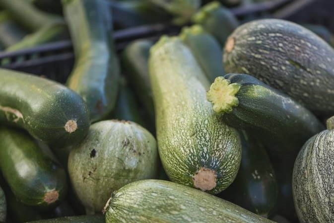 Why Does Raw Zucchini Cause So Much Intestinal Gas?