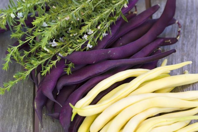 How to Cook Fresh Purple Beans