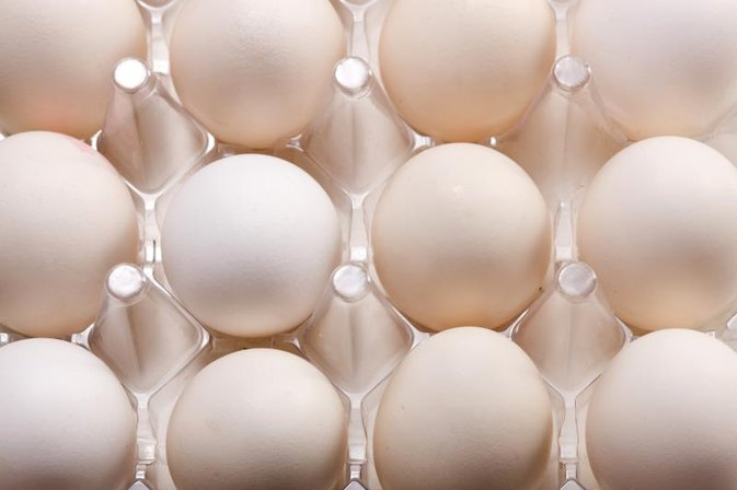 Choline in Eggs