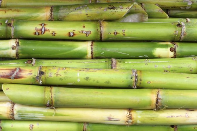 What Kind of Sugar Is in Sugar Cane?