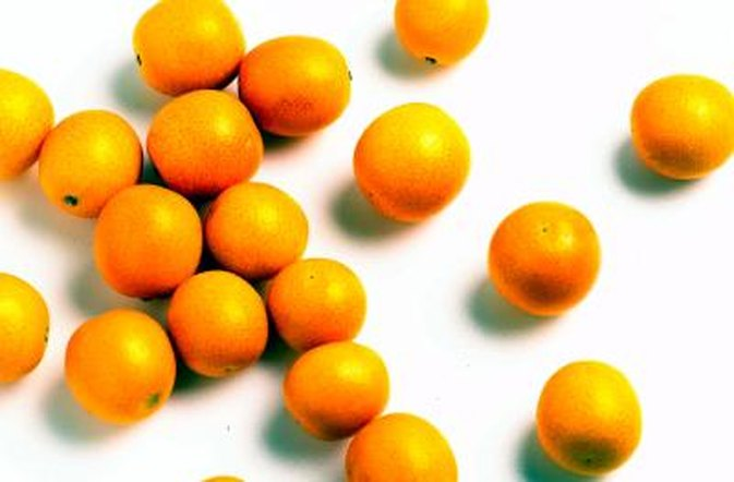 Does Vitamin C Affect Coumadin?