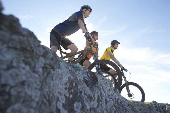 What Is the Difference Between a Downhill Bike and a Freeride Bike?