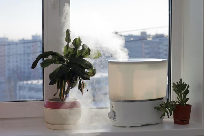 How To Clean Humidifier Mold