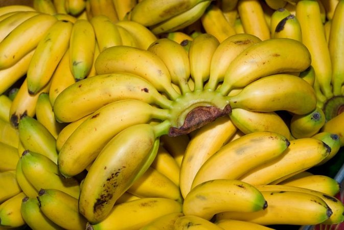How to Cook a Burro Banana