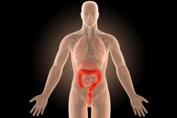 How Soon After a Colonoscopy Can You Eat?