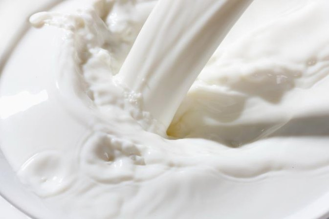 What Are the Functions of Lactose?