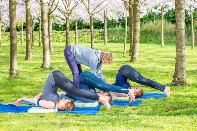 Advantages & Disadvantages of the 'Plough Pose' in Yoga
