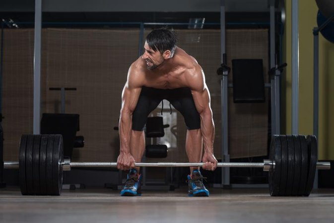 How to Build Leg Muscle Mass