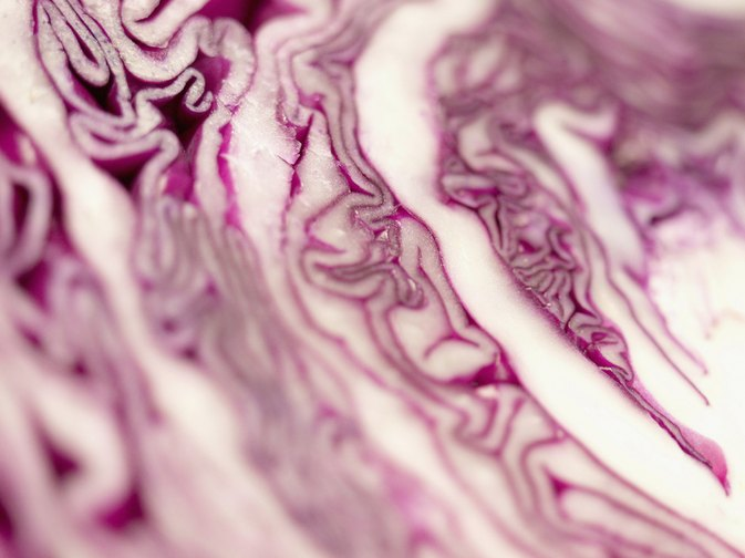How Does the Cabbage Family of Vegetables Affect Arthritis?