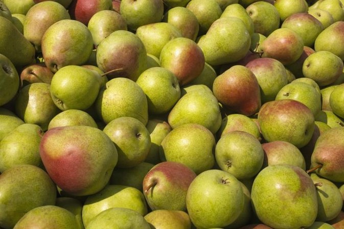 Is Pear Juice Good for Constipation?