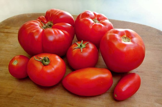 How to Prepare Fresh Tomatoes for Tomato Sauce