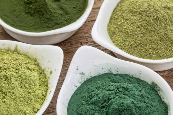 Blue Green Algae for Weight Loss & Detox