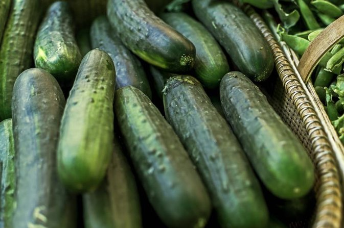 Gastritis And Cucumbers