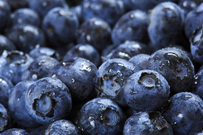 Blueberries & Constipation