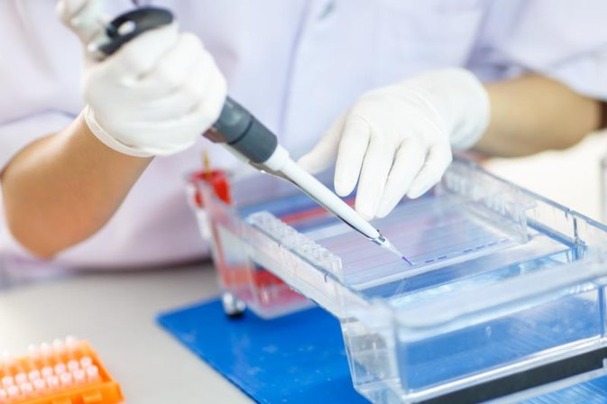What Are the Benefits of Using Electrophoresis?