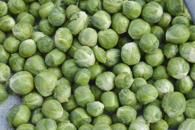 Do Brussel Sprouts Cause Urine to Smell?