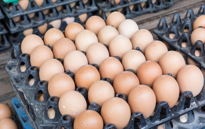 Is Vitamin K in Eggs?