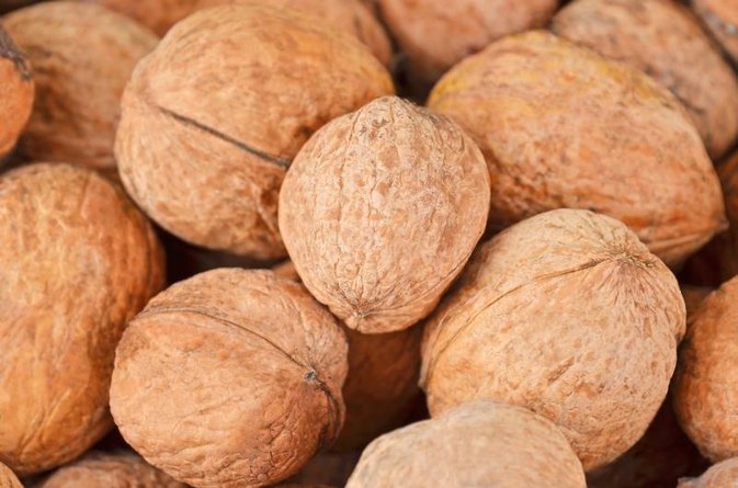 Types of Edible Hickory Nuts