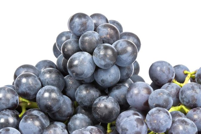 Nutritional Facts About Concord Grapes
