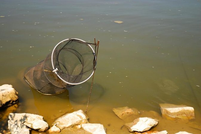 Tips on Fishing Hoop Nets