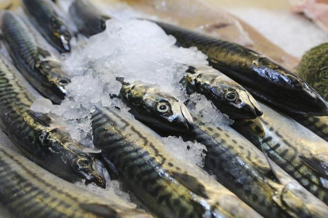 The Nutritional Value of Norwegian Mackerel