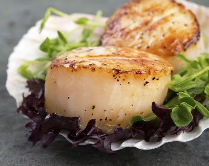 Nutritional Value of Scallops