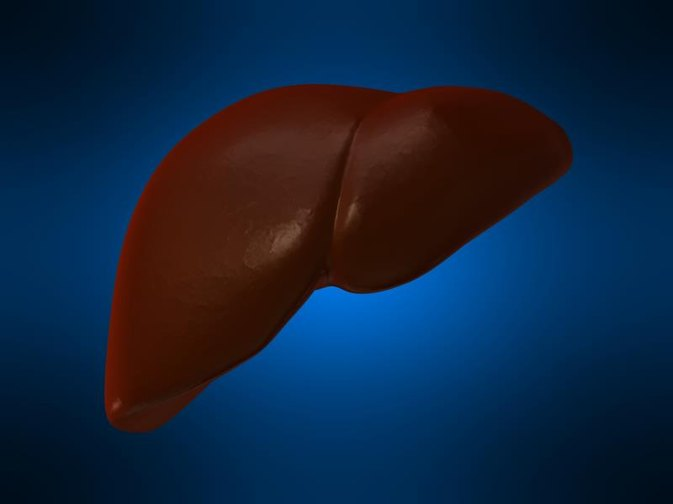 Can Too Much Potassium Cause Liver Problems?
