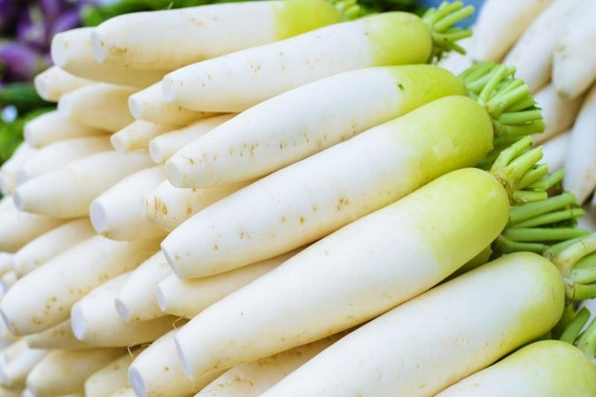 Chinese Turnip vs. Daikon