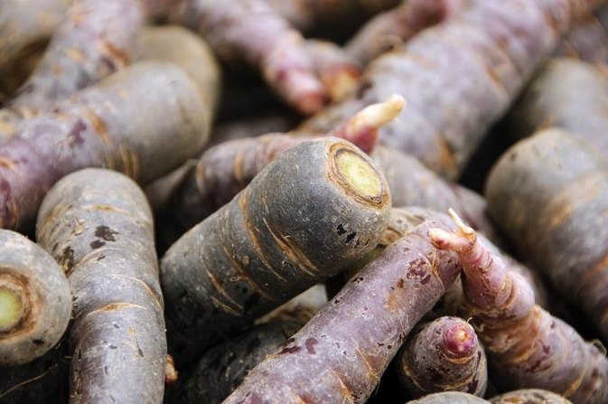 Purple Carrot Health Benefits