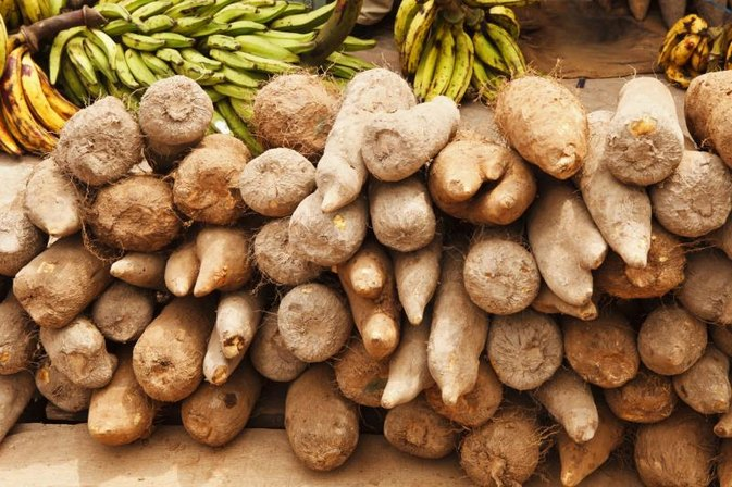 The Nutritional Benefits of Yams