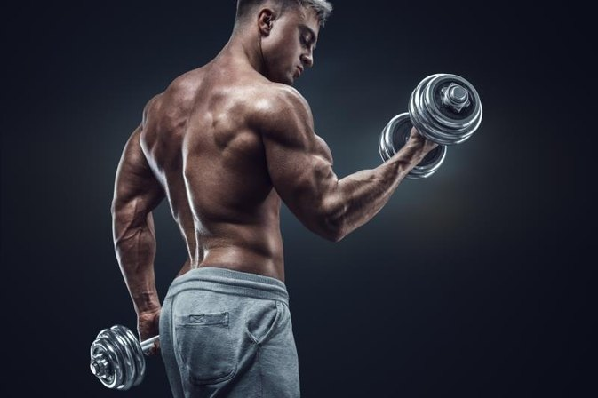 Genetic Limits in Bodybuilding