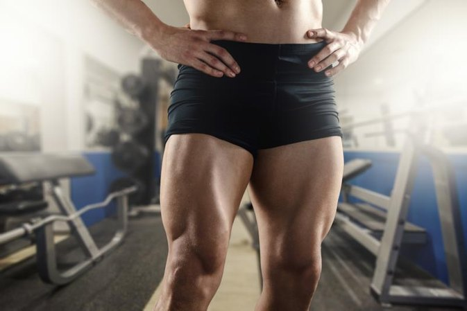 Facts on Vastus Medialis Muscle