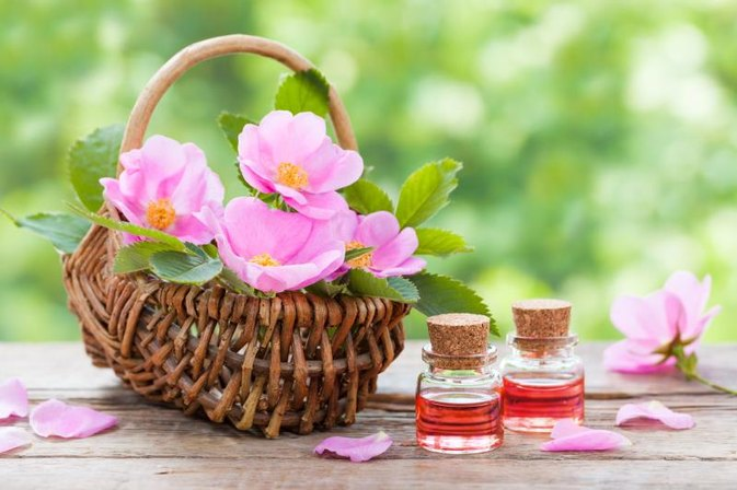 Application of Rose Hip Oil to the Skin