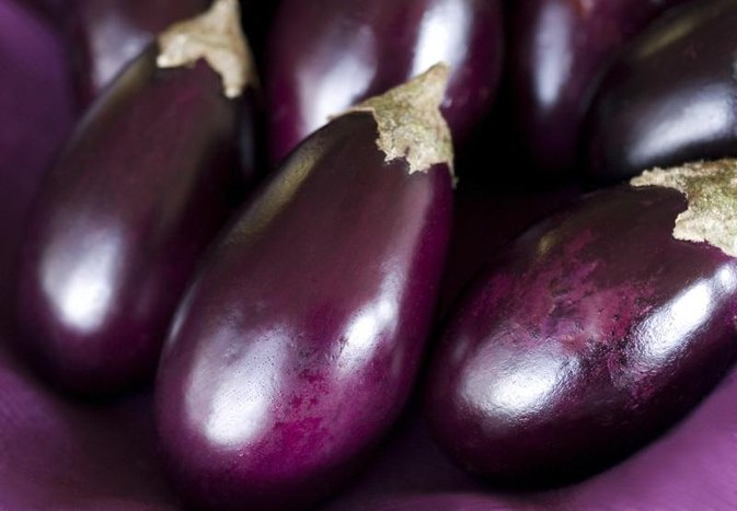 Allergy to Eggplant