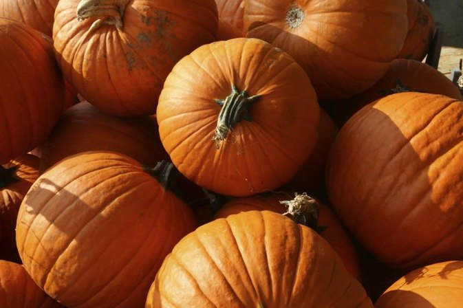 Diabetics and Pumpkin