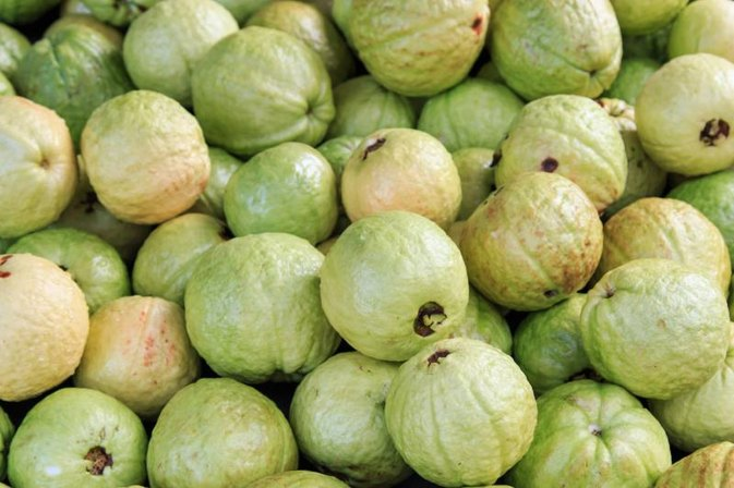 Is Guava Healthy?
