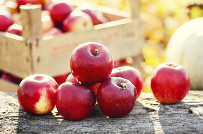 What Are Apple Polyphenols?