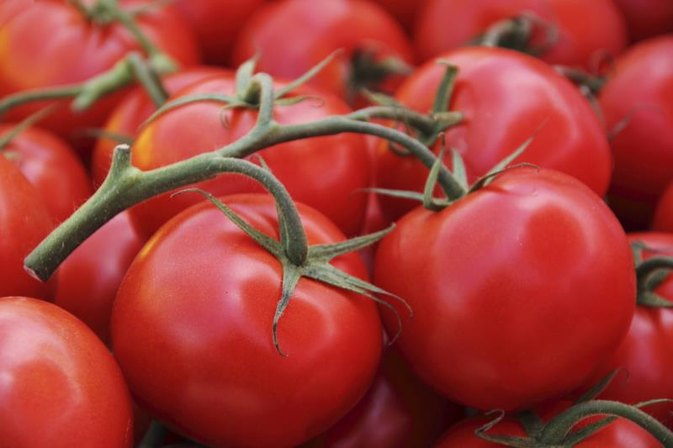 What Is an Allergic Reaction to Tomatoes?