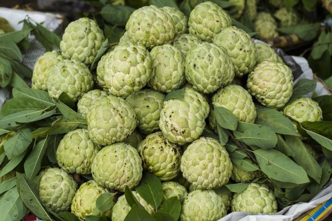 What Are the Health Benefits of Sweetsop?