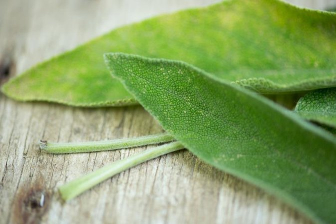 How to Make Sage Tea for Hot Flashes